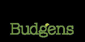 Budgens2